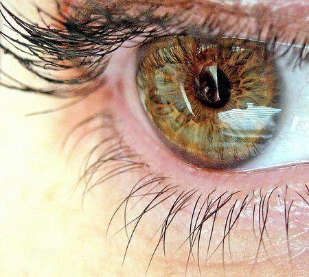 Опыты американских психологов показали, что наши глаза на